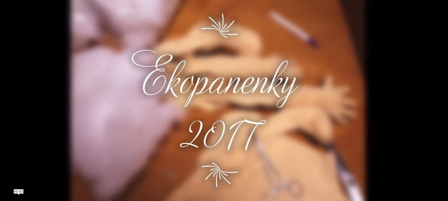 Přehled panenek EKOpanenky ušitých v roce 2017