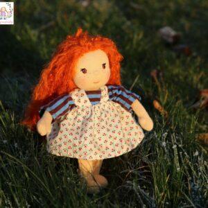 zrzavá panenka v trávě s jinovatkou